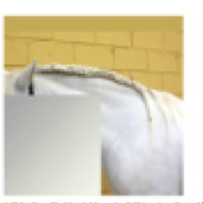 Serie: Los ojos serán los últimos en pixelarse (A)